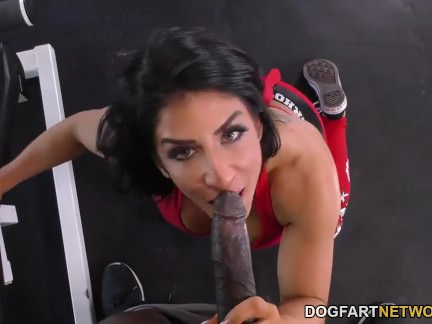 Anal Slut Raven Hart Squirts Like A Fucking Fountain From BBC